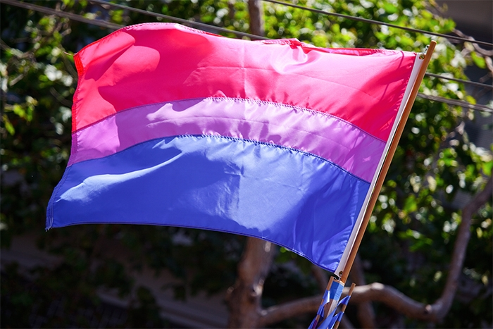show biseksualne stvarnosti spajanje električne utičnice