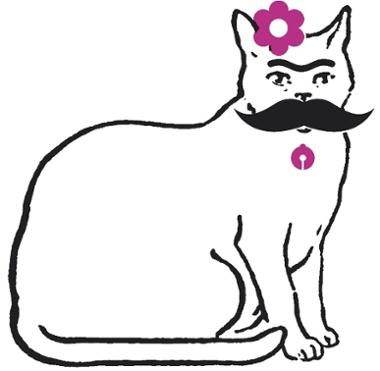 Ružna lezbijska maca